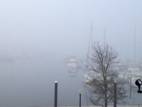 A Foggy Morning in Newport